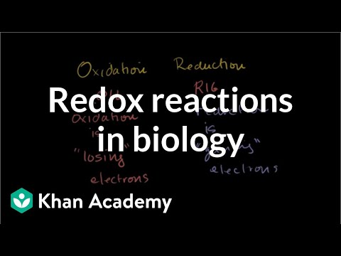 Oxidation and reduction review from biological point-of ...