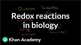 Oxidation and Reduction Review From Biological Point-of-View