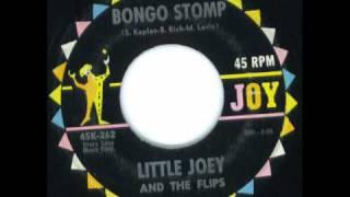 Bongo Stomp - Little Joey & Flips