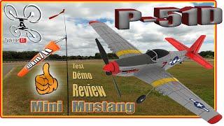 Eachine Mini MUSTANG P-51D - Review Test Démo - 45km/h de vent, même pas peur !