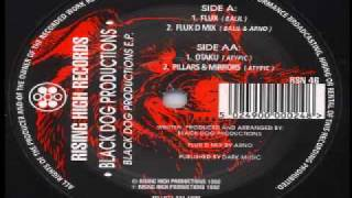 BLACK DOG PRODUCTION Flux D mix (RISING HIGH RECORDS)