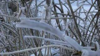 preview picture of video 'WINTERWANDERUNG-KELLERGASSE-POYSDORF-KETZELSDORF 1'