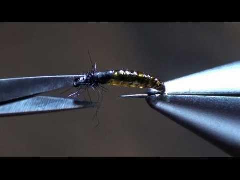 - Vliegvissen Tsjechië: voor uw ultieme vliegvisvakantie