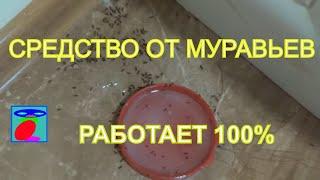Как использовать борную кислоту от муравьев