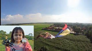 Drone Super Kecil VS Layangan Super Besar