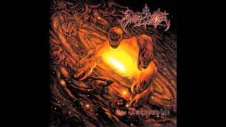 Angelcorpse - Desecration Of Virgin (Sarcofago Cover)