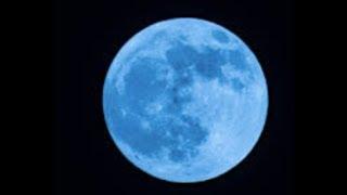 "Prophecy ""Super Blue Blood Moon"" Mark Biltz Reveals"" LIVE"