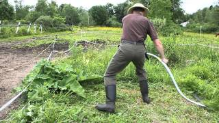 Mowing Hay with an Austrian Scythe - Most Popular Videos