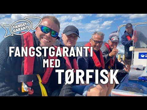 Fangstgaranti på fisketur med Tørfisk