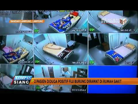 Video Dua Warga Lampung Diduga Terjangkit Virus Flu Burung
