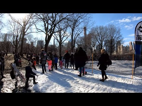 mp4 College Central Park, download College Central Park video klip College Central Park