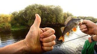 Рыбалка в еськах бежецкий район