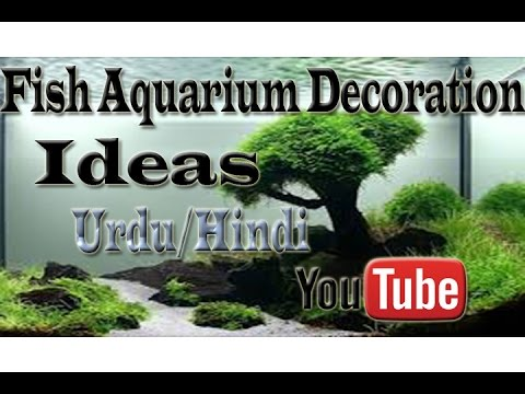 Fish Aquarium Decoration ideas Urdu/Hindi