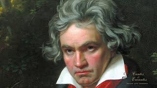 1 horas com as melhores músicas clássicas para  estudar, trabalhar, ler, descontrair e relaxar!