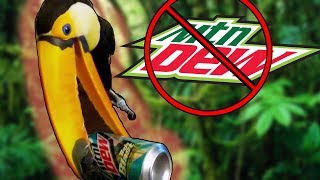 Toucan vs. Mountain Dew Can! (CRUSHING WITH HER BILL?!)