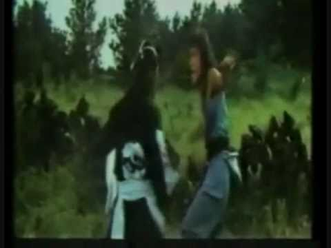 Fist of the golden monkey (Mad for vengence Theatrical Trailer2)