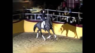 video of Quadroneur