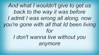 Josh Gracin - I Don't Want To Live Lyrics