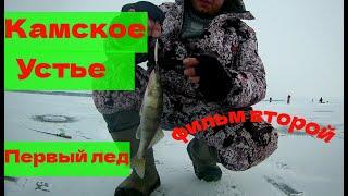 Ловля берша на куйбышевском водохранилище зимой