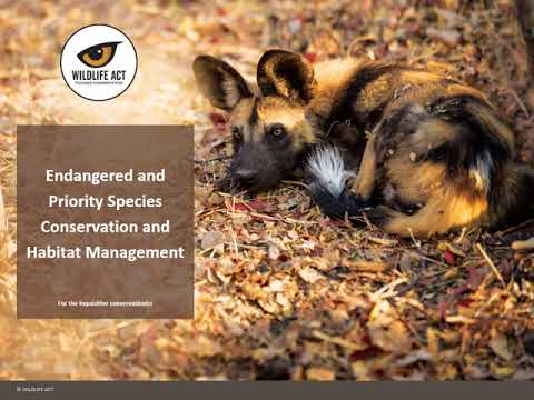 Wildlife ACT Conservation Training Course - YouTube