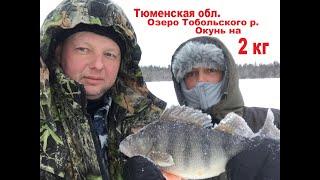 Рыбалка на реке вагай тюменской области