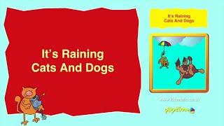 Kidzone - It's Raining Cats And Dogs