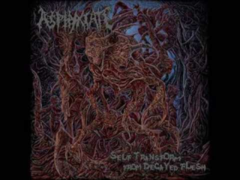 NSE RECORDS - ASPHYXIATE - SELF TRANSFORM FROM DECAYED FLESH