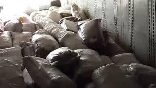 20 тонн Восточной плодожорки отправлены обратно в Кыргызстан