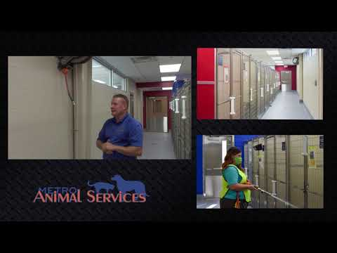 Hannay Reels and Louisville Metro Animal Services
