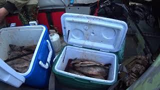 Рыбалка на реках восточной сибири она