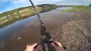 Рыбалка на томи в октябре ярыгинская курьянка