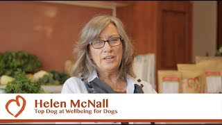 Wellbeing Essentials: Wellbeing for Dogs