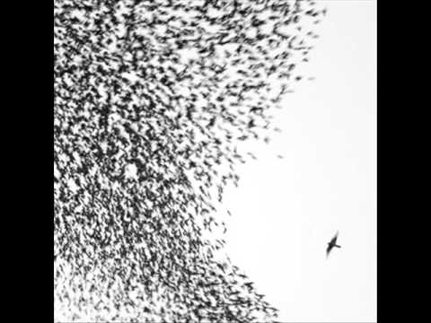 Either Way (Song) by Wilco