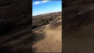 Relaxing & Yawing Around FPV Drone Flight! #Shorts