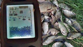 Какой выбрать лучше эхолот для рыбалки с берега