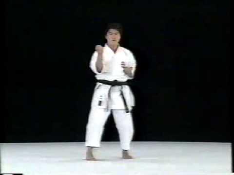 Seisan Shito Ryu