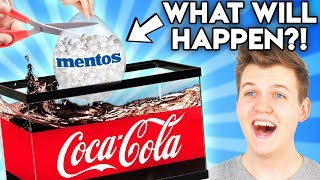 Can You Guess The Price Of These DIY FOOD LIFE HACKS?! (GAME)