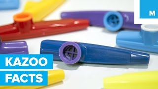 Why the Kazoo is America's Secret Musical Weapon