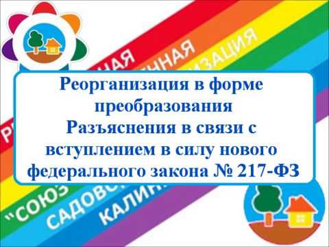 Реорганизация по ФЗ 217   Сафронов В И