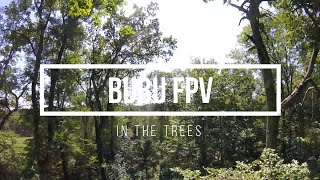 FPV - In The Trees
