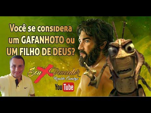 FILHOS DE DEUS OU GAFANHOTOS?