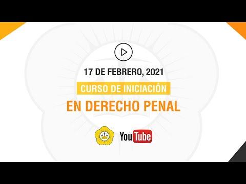 CURSO DE INICIACIÓN EN DERECHO PENAL - 17 de Febrero 2021