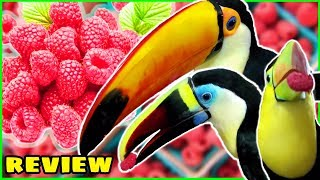 Toucans Try Raspberries for the First Time! | Toucan Fruit Reviews