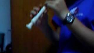 Shizuka na Yoru Ni (In This Quiet Night) - Recorder Version