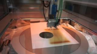 Sawatec iSpray-300 process
