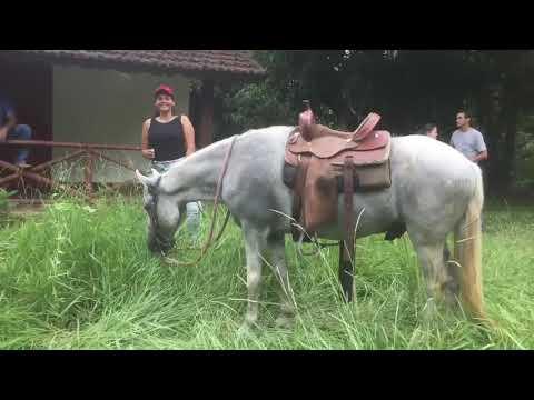 Cavalgada Aldeia Velha