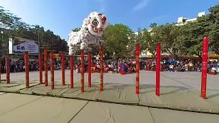 舞狮子/Lion Dance/VR180