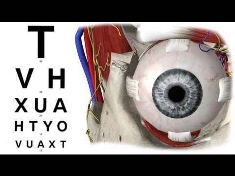 Visual Acuity in 5 min