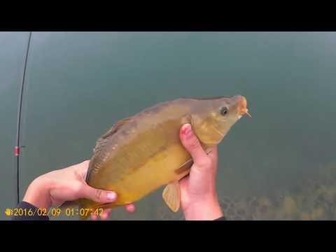 La pesca su una pertica su piccoli fiumi