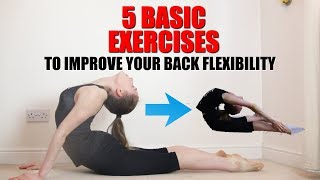 5 BASIC BACK STRETCHES TO IMPROVE YOUR BACK FLEXIBILITY
